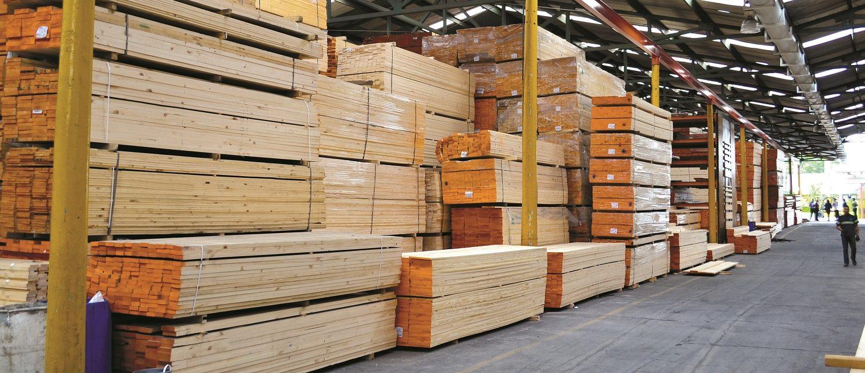 forestales latinoamericanos costa rica